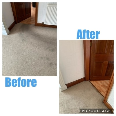 Carpet Cleaners Chester
